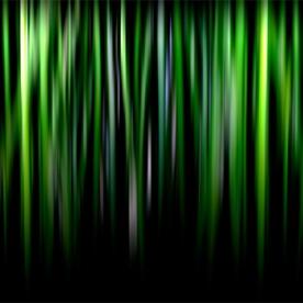 bamboo | 2010