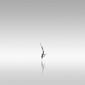 reach | 2009