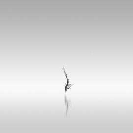 reach | 2008